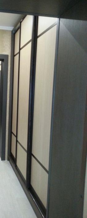 Большой шкаф-купе-Шкаф-купе с зеркалом «Модель 56»-фото3